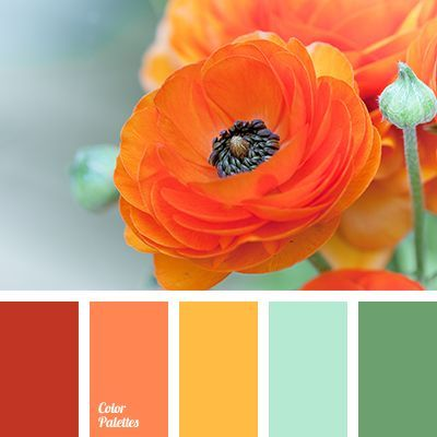 Bright, cheerful range of colors. Color riot, improves mood and gives positive emotions. A slightly muted orange, yellow, mint, color of young grass make u.