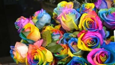How To Make DIY Rainbow Roses #rainbowroses
