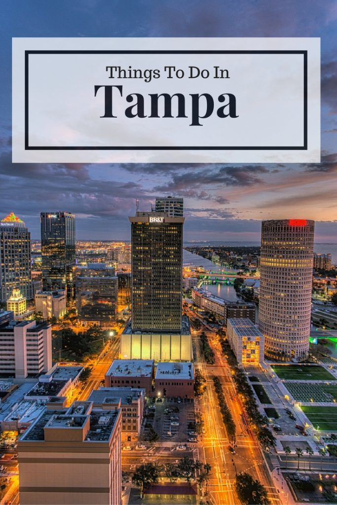 15 best things to do in tampa fl florida florida things to do rh pinterest com