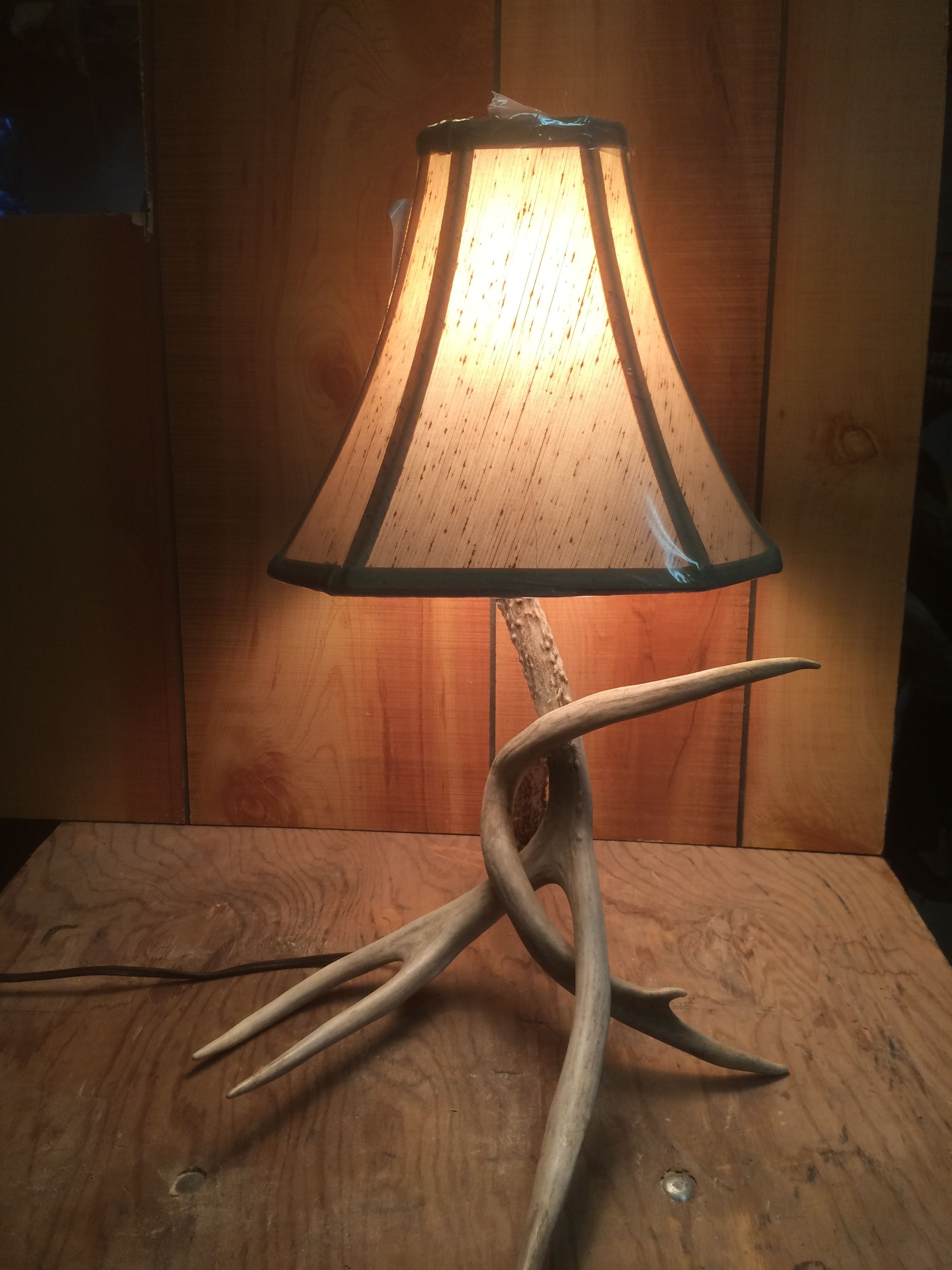 Humble Ridge Antler Lamp