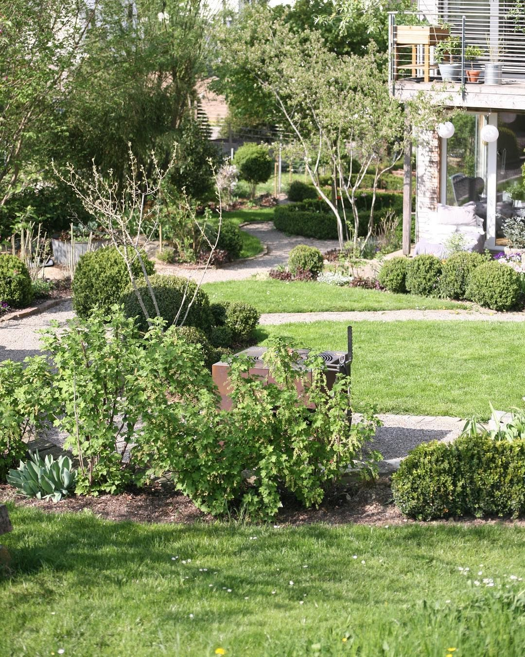 Im Vordergrund Tragen Die Vier Roten Johannisbeerbusche Schon Winzige Beeren Rote Johannisbeeren Mag Ich Am Liebsten Ein Schweizer Garten Garten Bepflanzung
