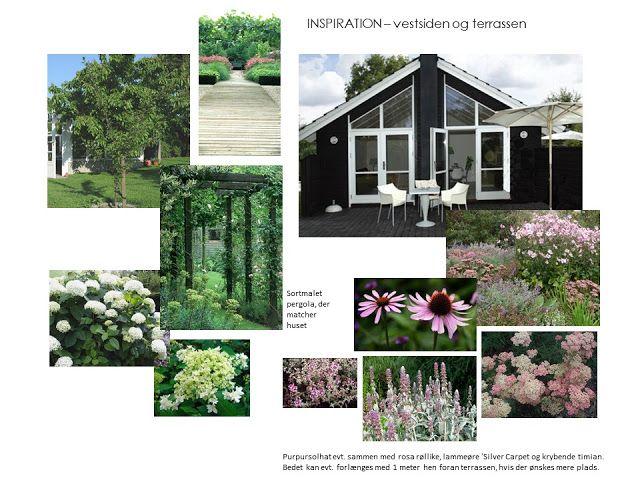Havedesign, haveplaner, planteplaner, havearkitekt, blomster, planter, haver, design, livsstil.