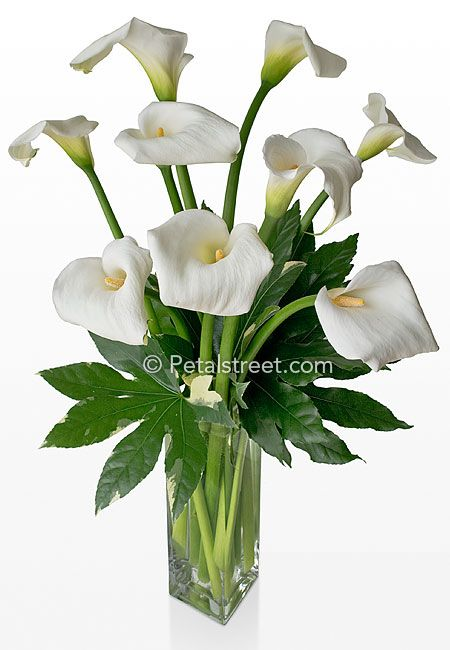 Flower Arranging In A 12 Tall Vase Home Funeral Flowers Sympathy