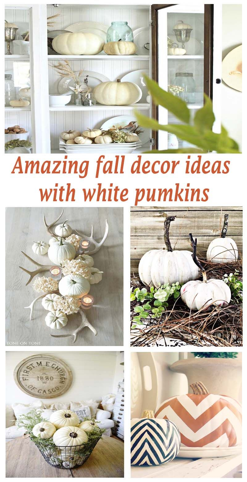 An incredible collection of inspiring fall decor schemes using festive white pumpkins with tips on how to achieve the same look in your home.
