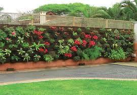 Resultado de imagem para jardins externos