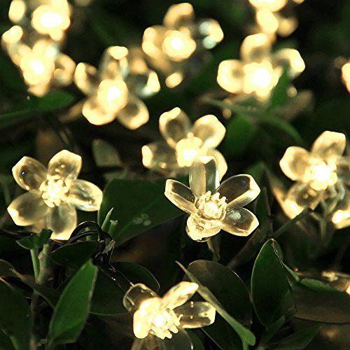 Amazon.com: Solar Christmas String Lights 50 Led Blossom Flower Fairy Light  Outdoor For