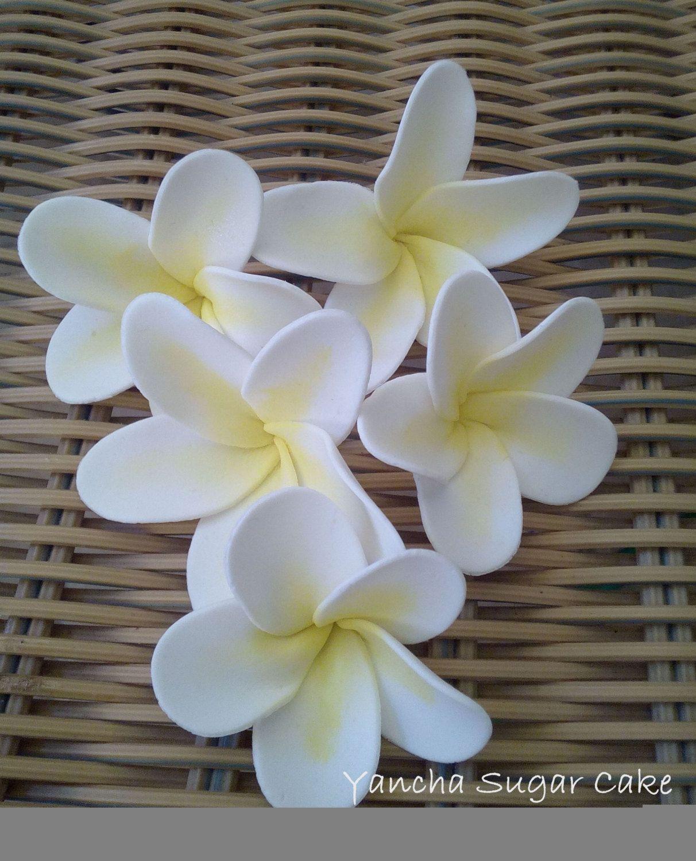 Large Frangipani White 5cm Edible Sugar Flowers