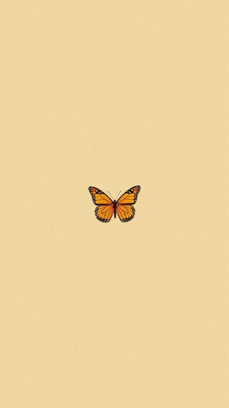 ig: kaylaknguyen_ - #ig #kaylaknguyen | Butterfly ...