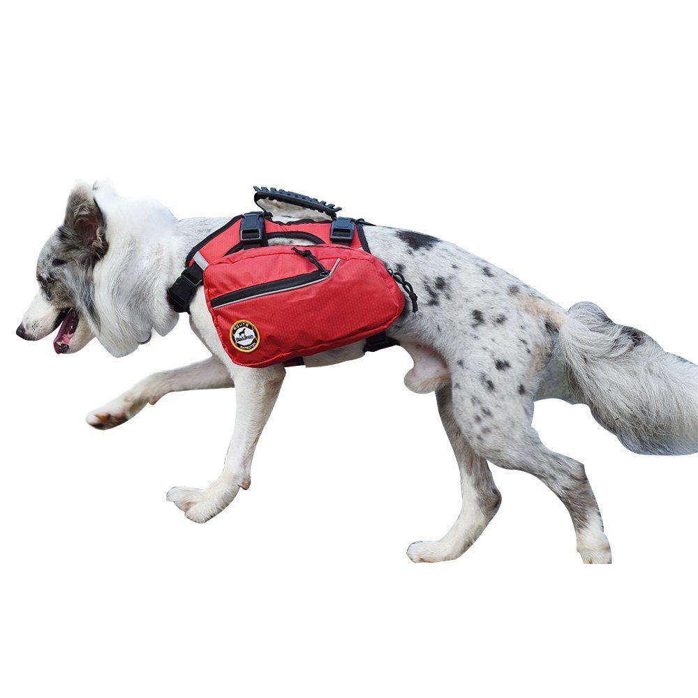 AKC Pet Safety Bandana with Reflective Stripes