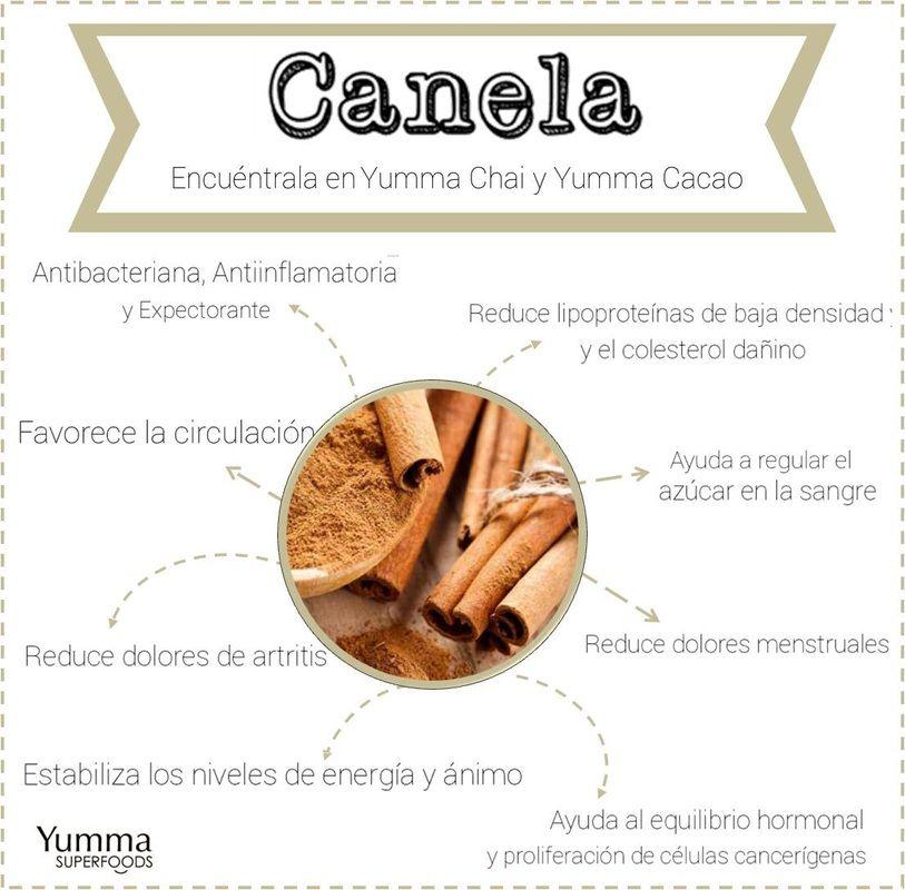 Beneficios de la Canela | VIDA SANA | Pinterest | Salud