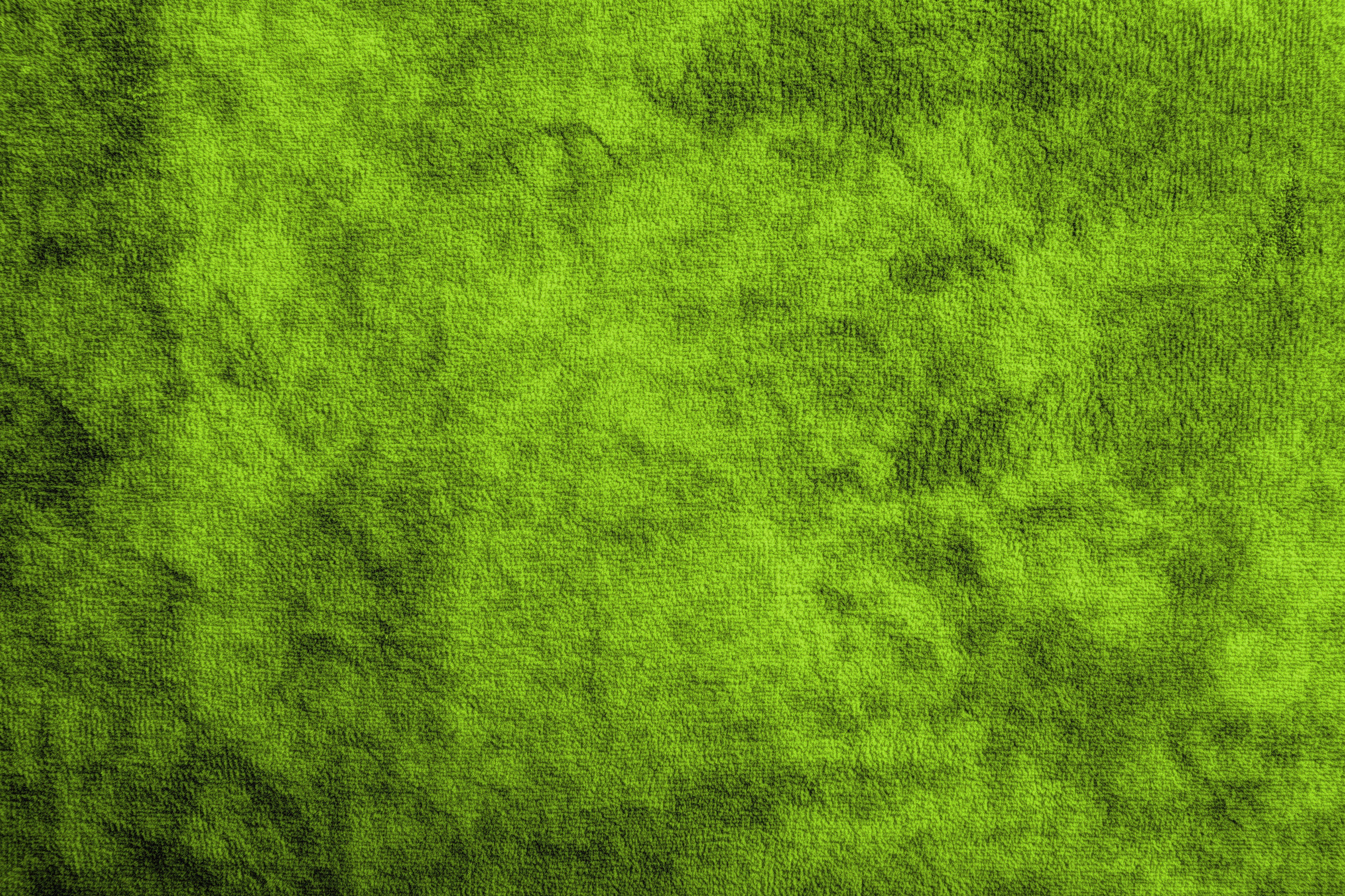 Pin by Lynn Zeng on PS resource | Green texture, Green fur ...