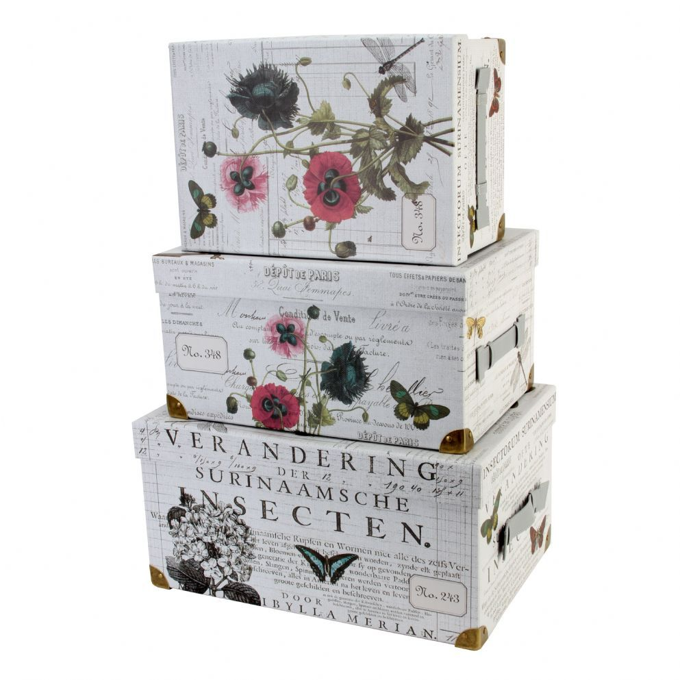 Decorative Lidded Storage Boxes Tricoastalset Of 3 Trunk Style Storage Boxes  Studio Graphique