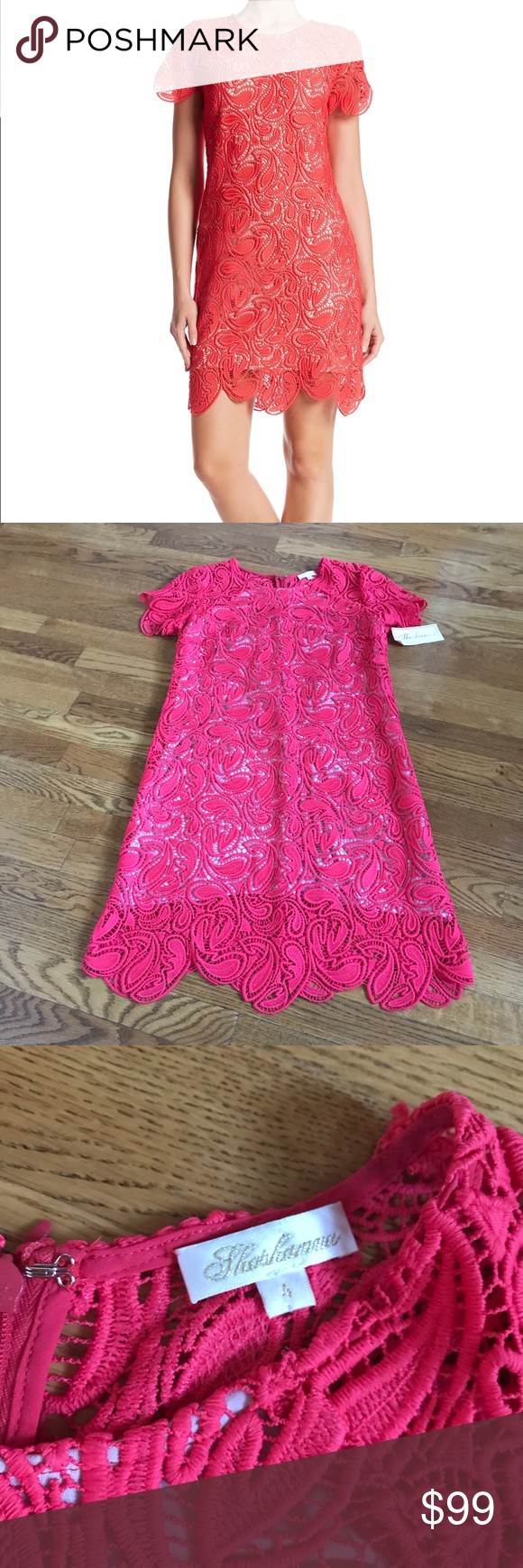 Shoshanna rae crochet dress pink size nwt scalloped hem zip and