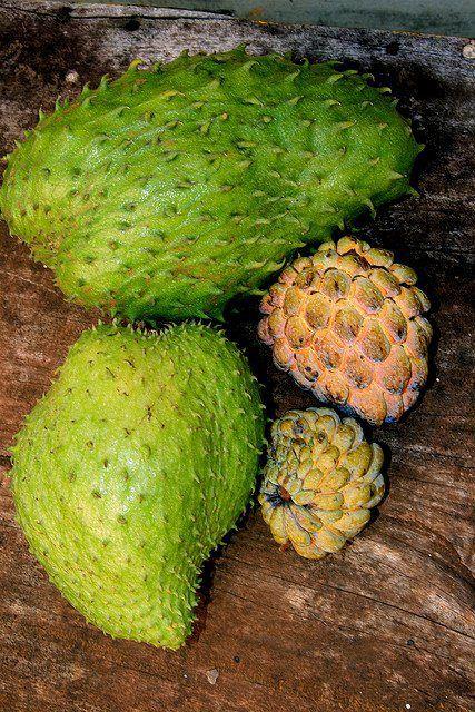 Jamaican Sweetsop Sweetsop & sour...