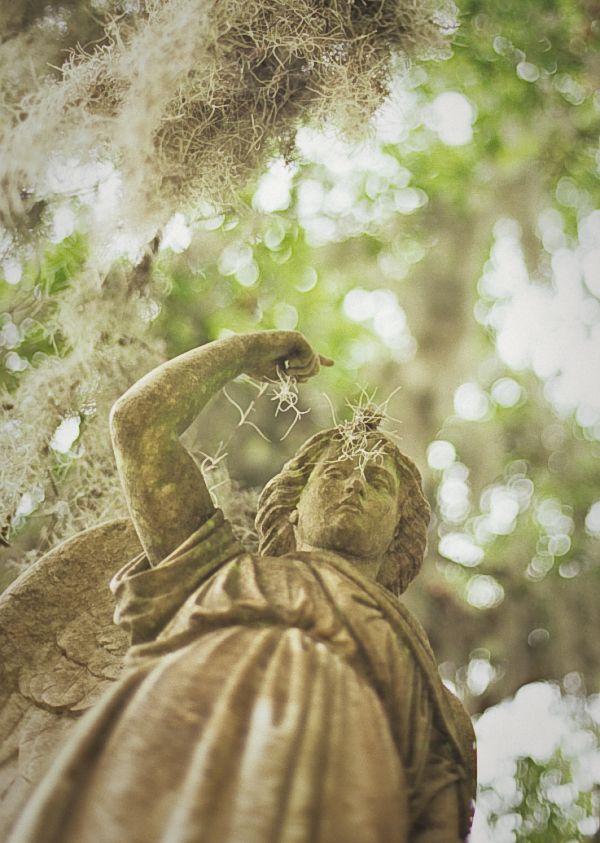 Bonaventure cemetery angel