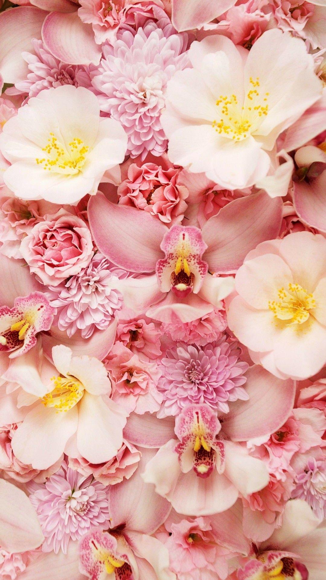 Pink Flower Phone Backgrounds Purple flowers wallpaper