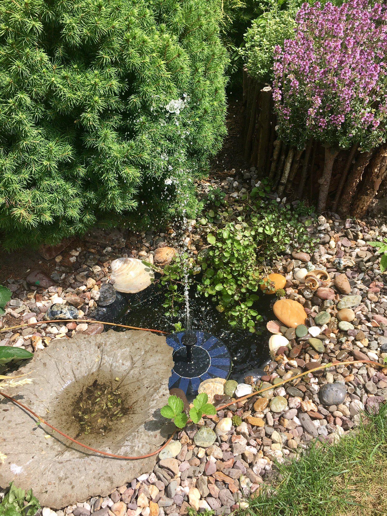 Yard Ideas Miniteich An Kr Uterspirale Brunnenkresse, Solarpumpe, Vogeltr Nke
