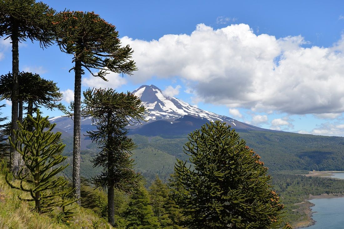 Conguillio National Park volcano