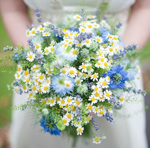 Fiori Economici Di Matrimonio Sposiamocirisparmiando It Fiori Di Campo Per Matrimonio Bouquet Di Margherite Bouquet Da Sposa