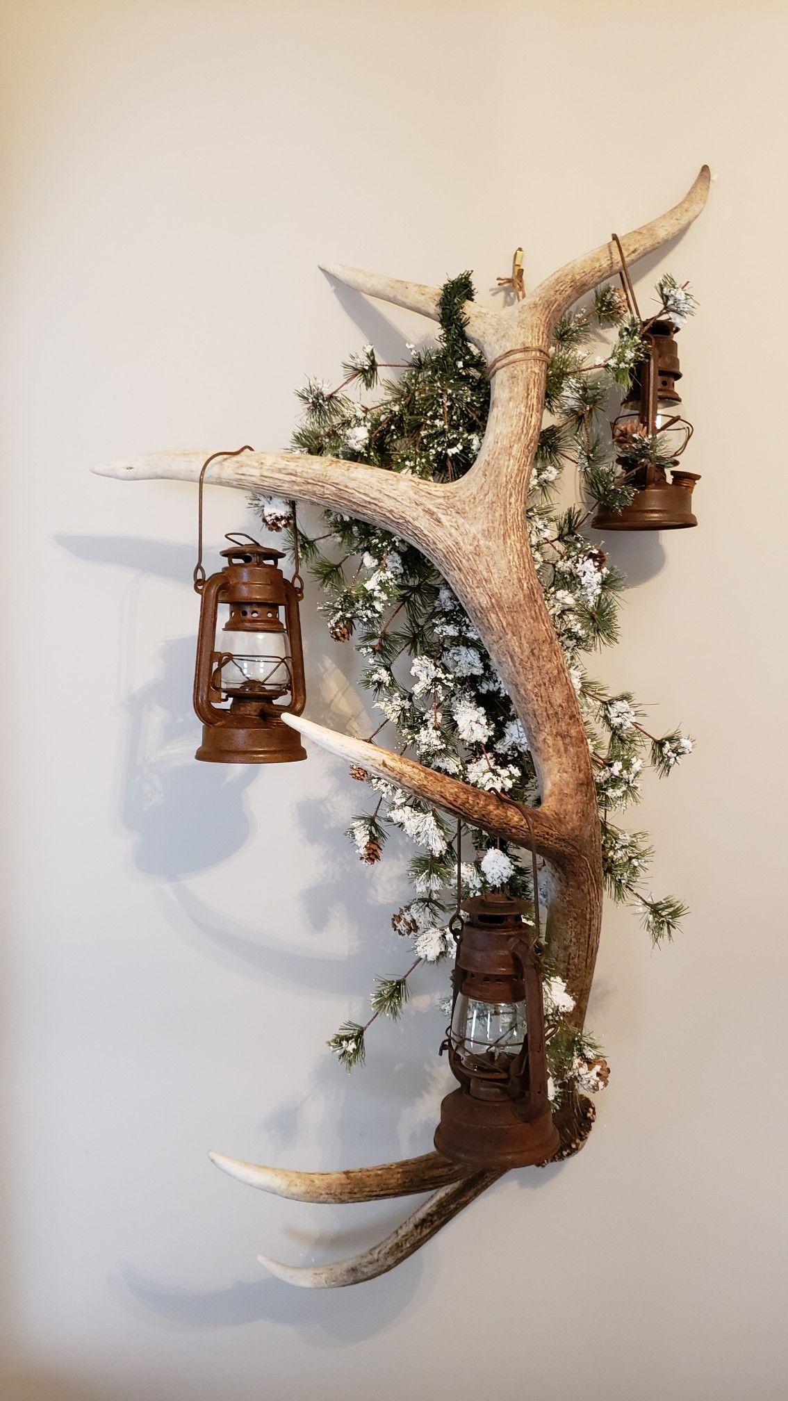 Elk antler lantern hanger