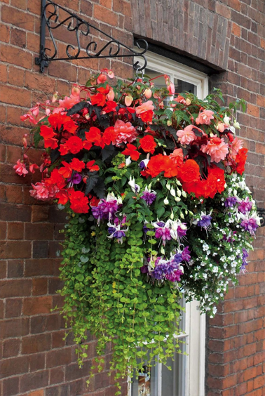 hanging baskets made in uk - Google Search