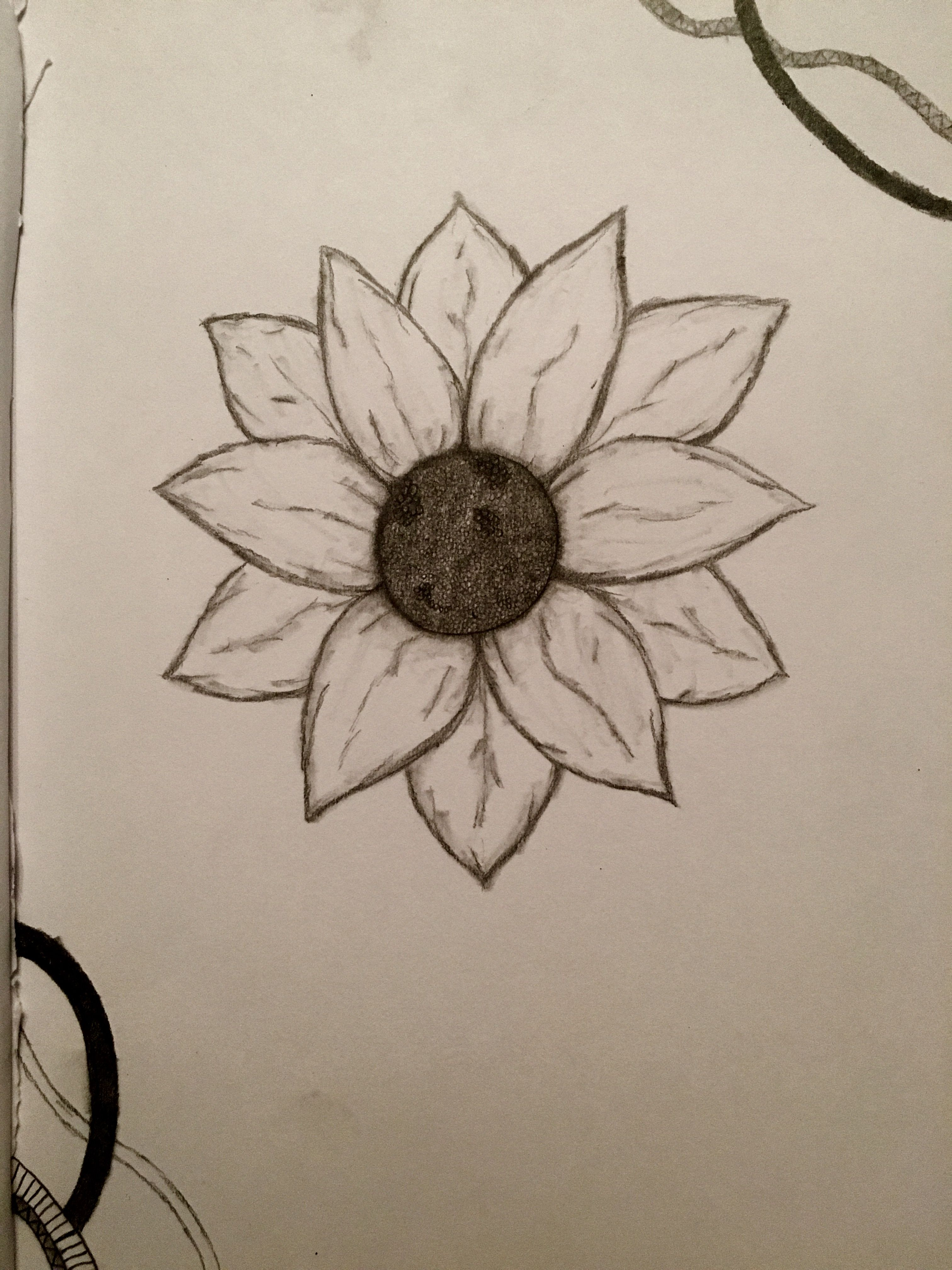 How To Draw Flowers Step By Step With Pictures Beautiful Flowers