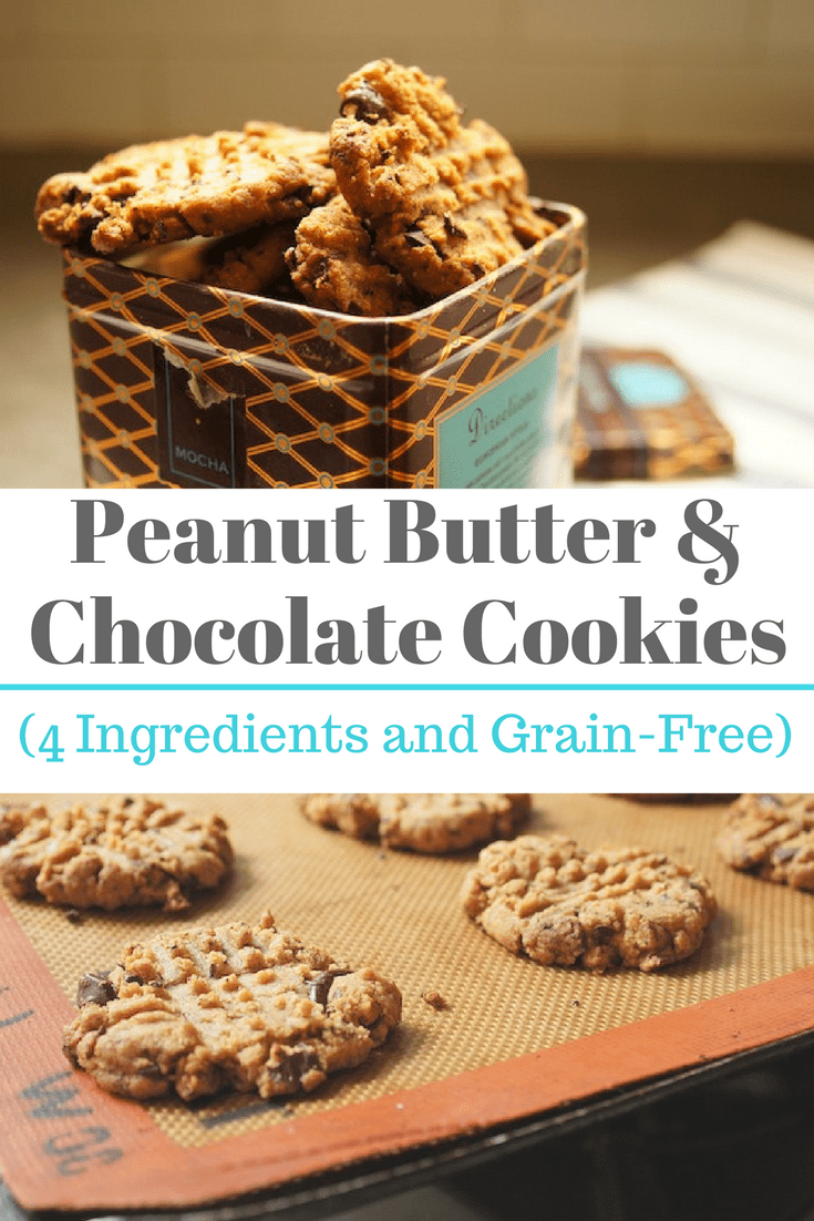 4Ingredient Peanut Butter Chocolate Chip Cookies Recipe