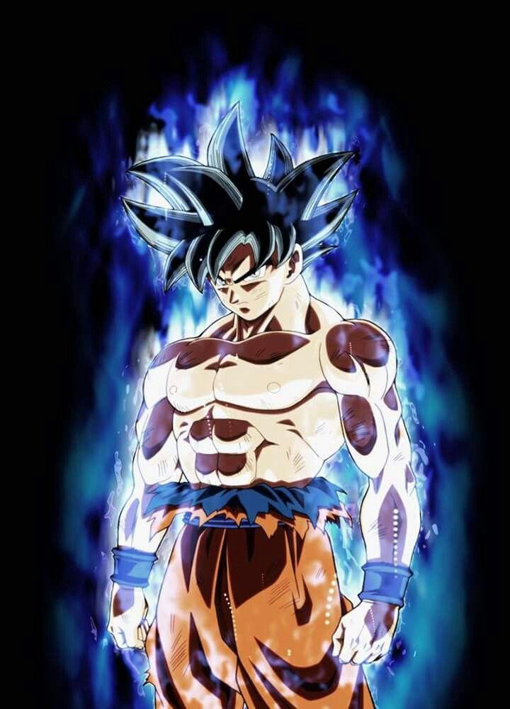 Goku Ultra Instinct Anime Dragon Ball Super Dragon Ball Super Wallpapers Dragon Ball Super Goku