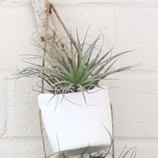 Photo of Make Your Own Modern DIY Hanging Planter | eHow.com