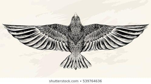 Photo of Croquis d'oiseau pour le tatouage. Dessin au trait. Illustration vectorielle. #diytattooimages