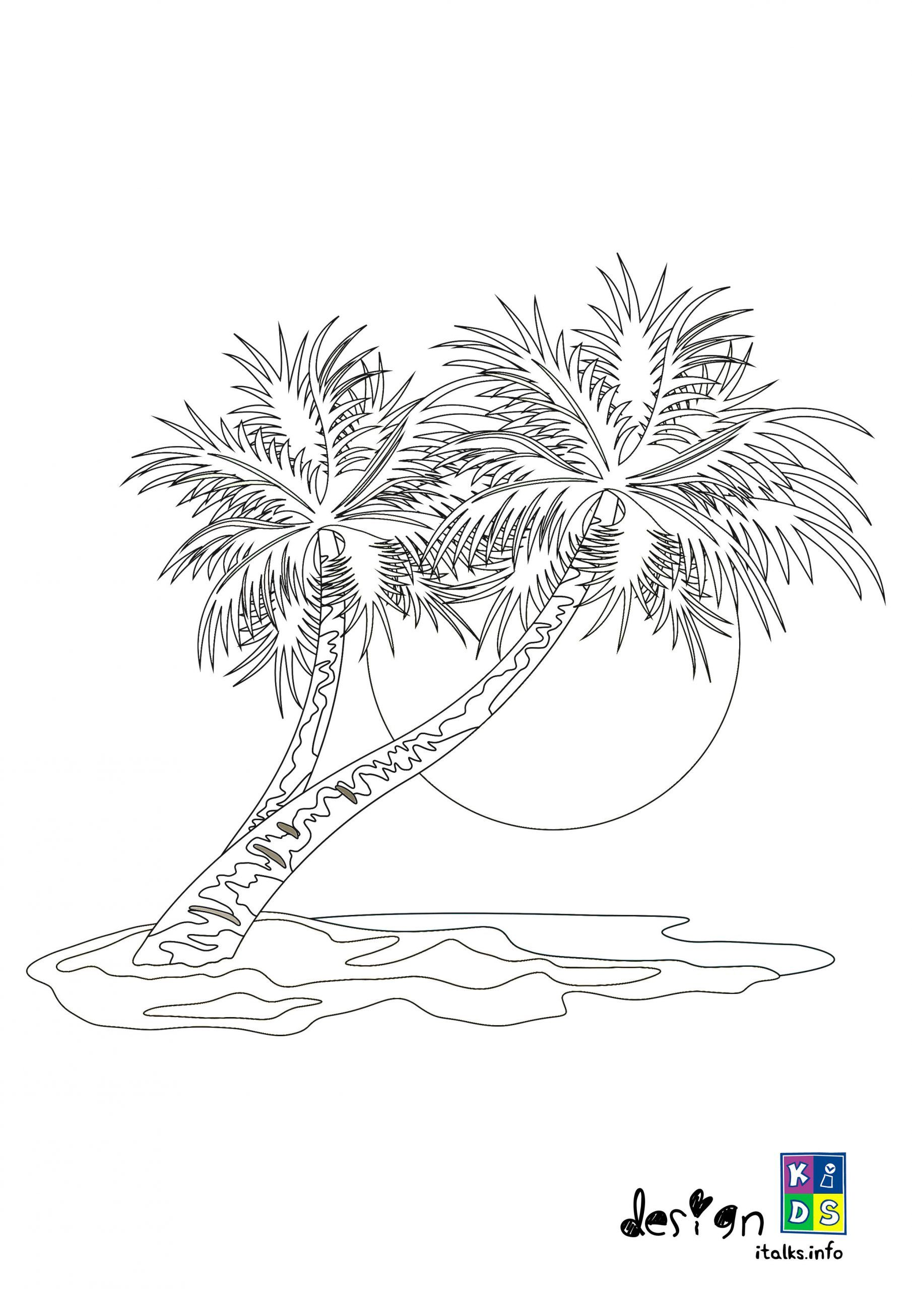 Palm Tree With Sunset Coloring Page In 2020