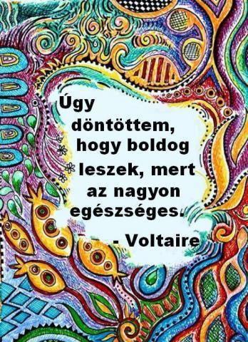 nagyon boldog idézetek Voltaire idĂŠzetek | Voltaire quotes, Choose happy, Happy quotes