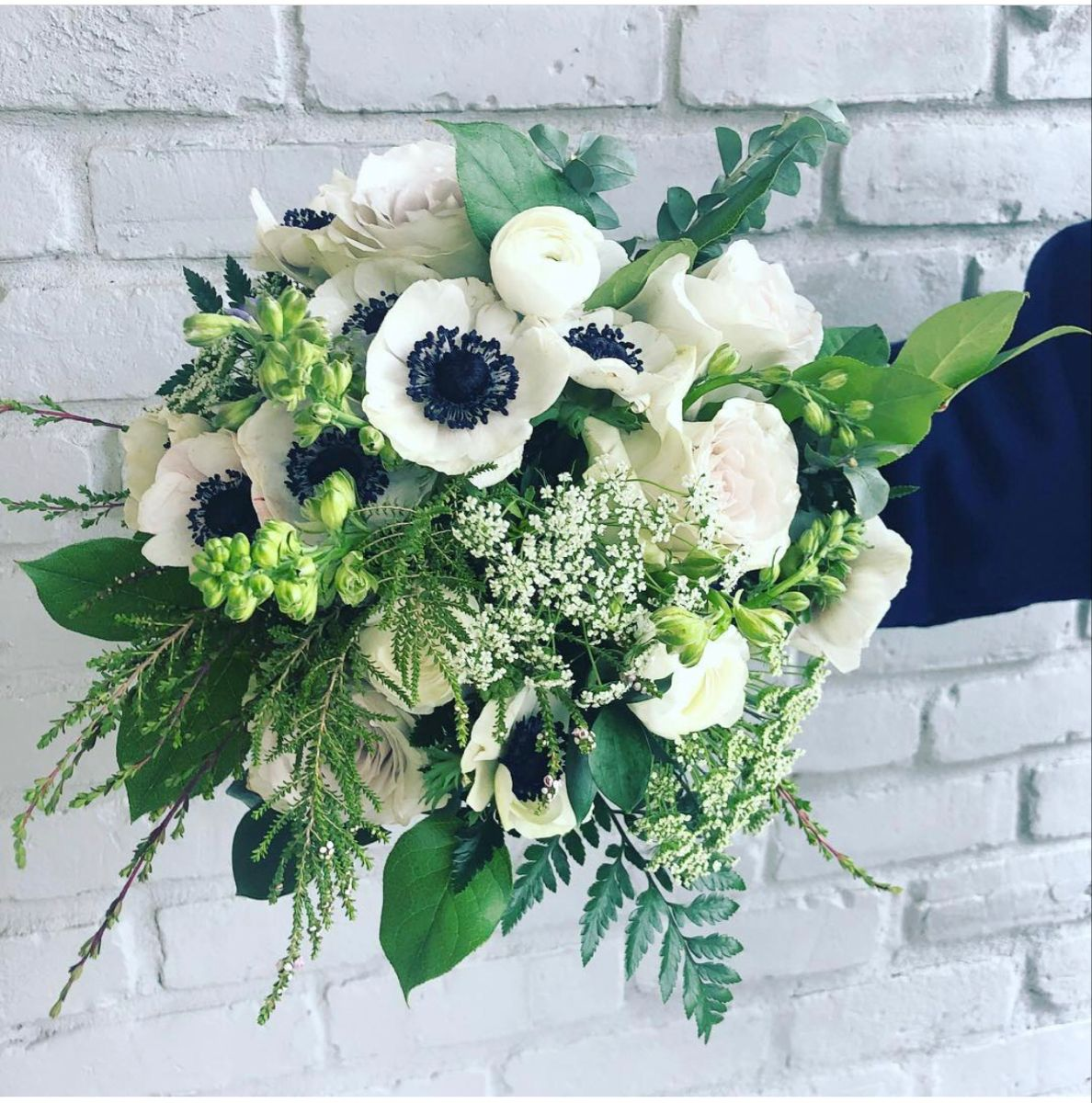 Anemone Flower In 2020 Anemone Flower White Anemone Flower Flowers For Sale