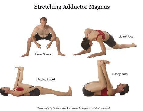 Adductor Magnus Stretch