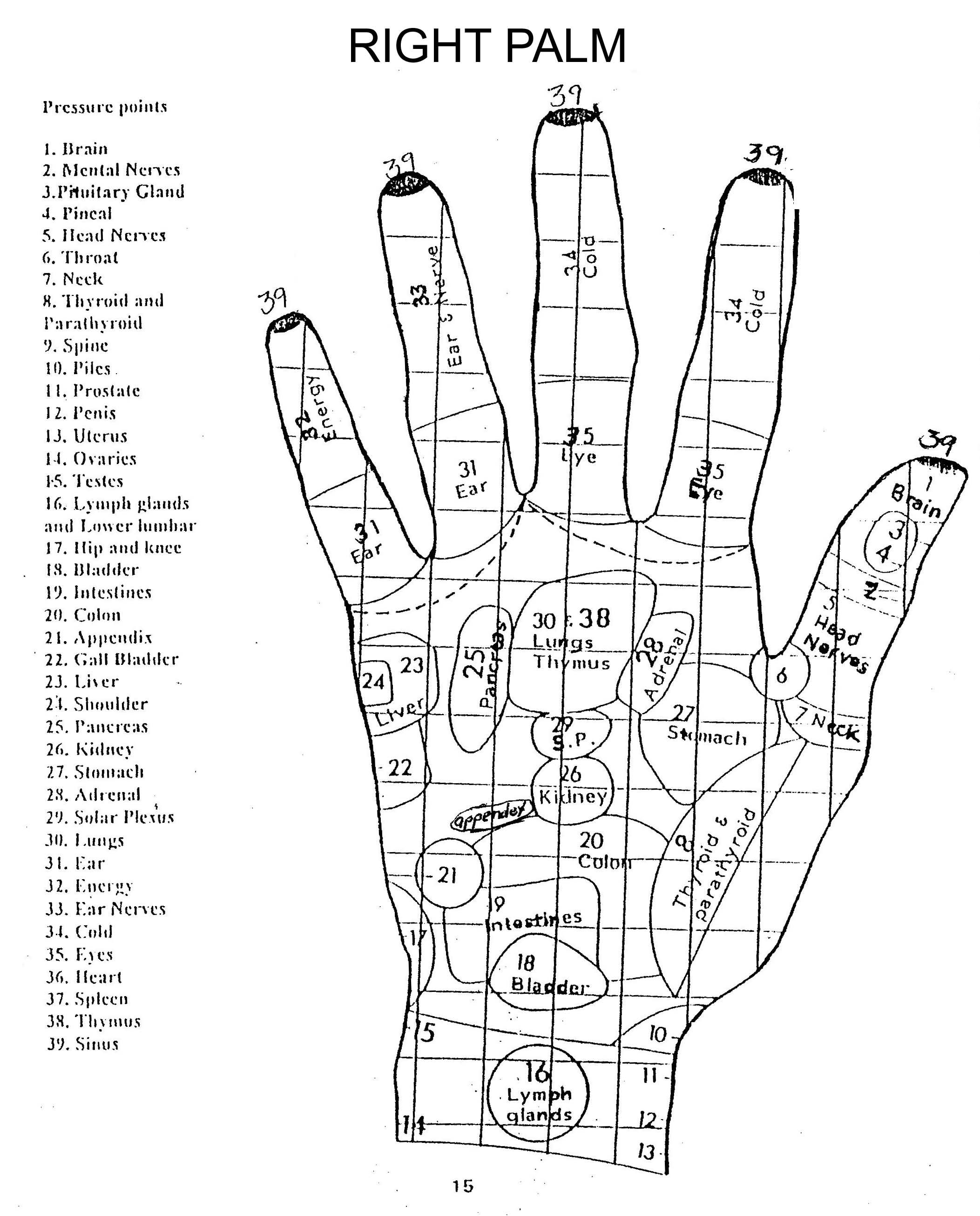 Left Hand Pressure Points