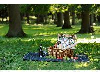 Ein romantisches Picknick im Grünen