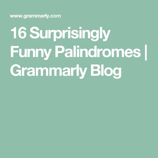 Surprisingly Funny Palindromes Idioms English Fun Funny