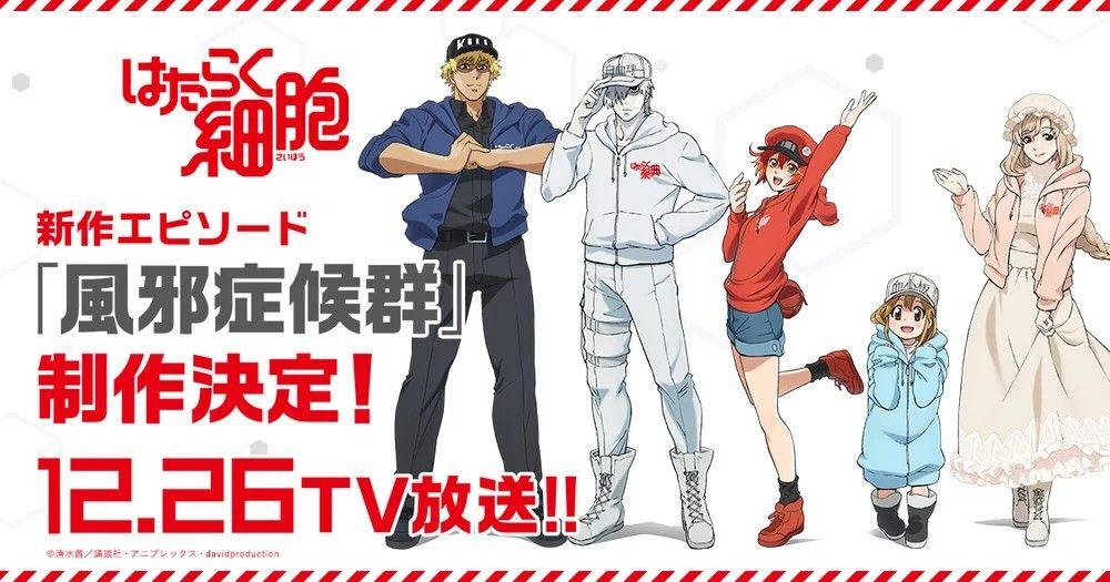 El anime Cells at Work! recibirá un nuevo episodio Anime