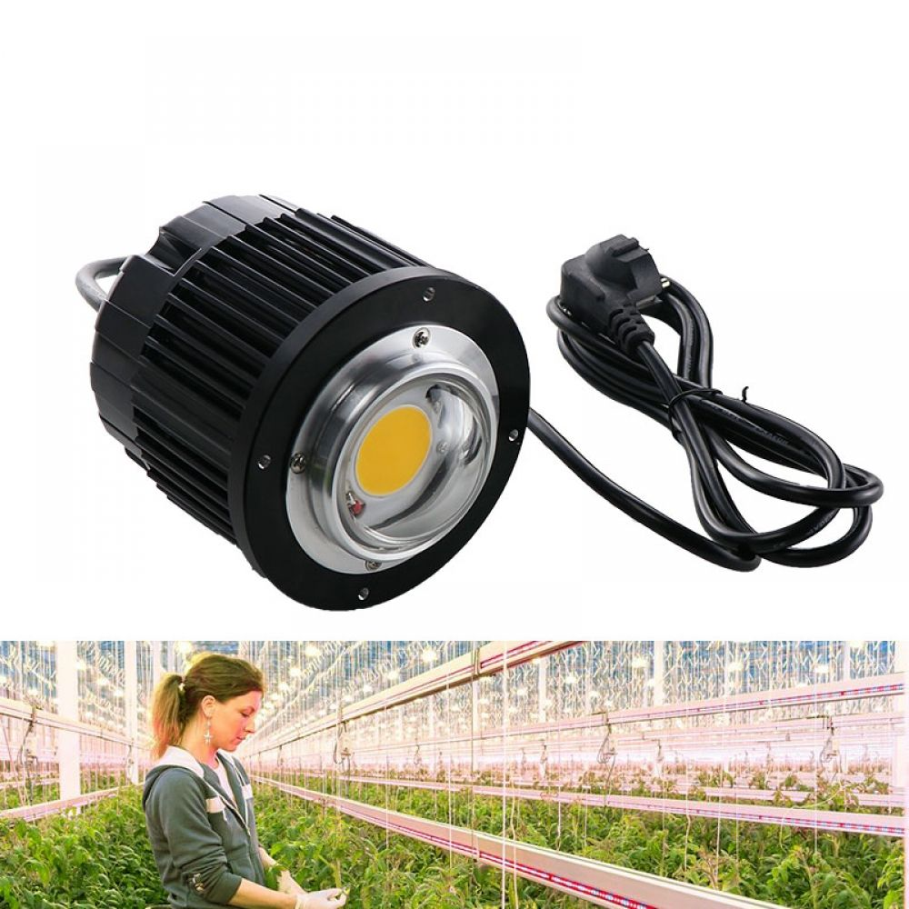 100w Led Grow Light Cree Cob Cxb3590 3000k 3500k 5000k 12000lm Original Chip High Power Lumens For Diy Plant Growing Lamp Led Grow Lights Grow Lights Led Grow