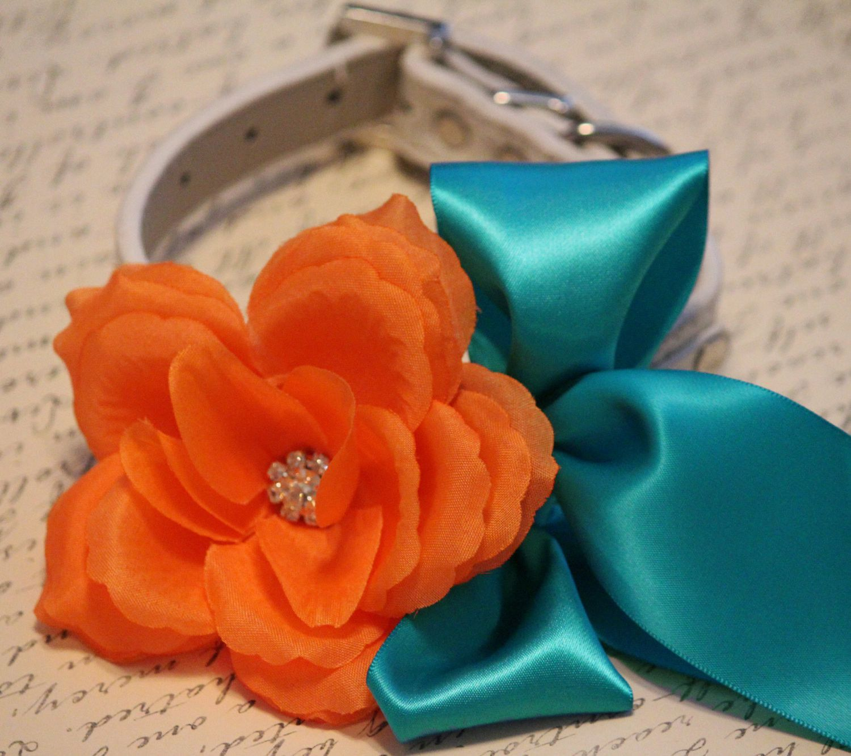 Orange teal blue wedding dog collar, Wedding dog accessory, Orange ...
