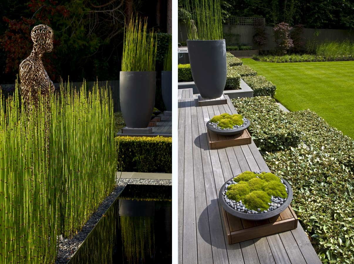 Anthony Paul Landscape Design Just love the use of timber decking in ...