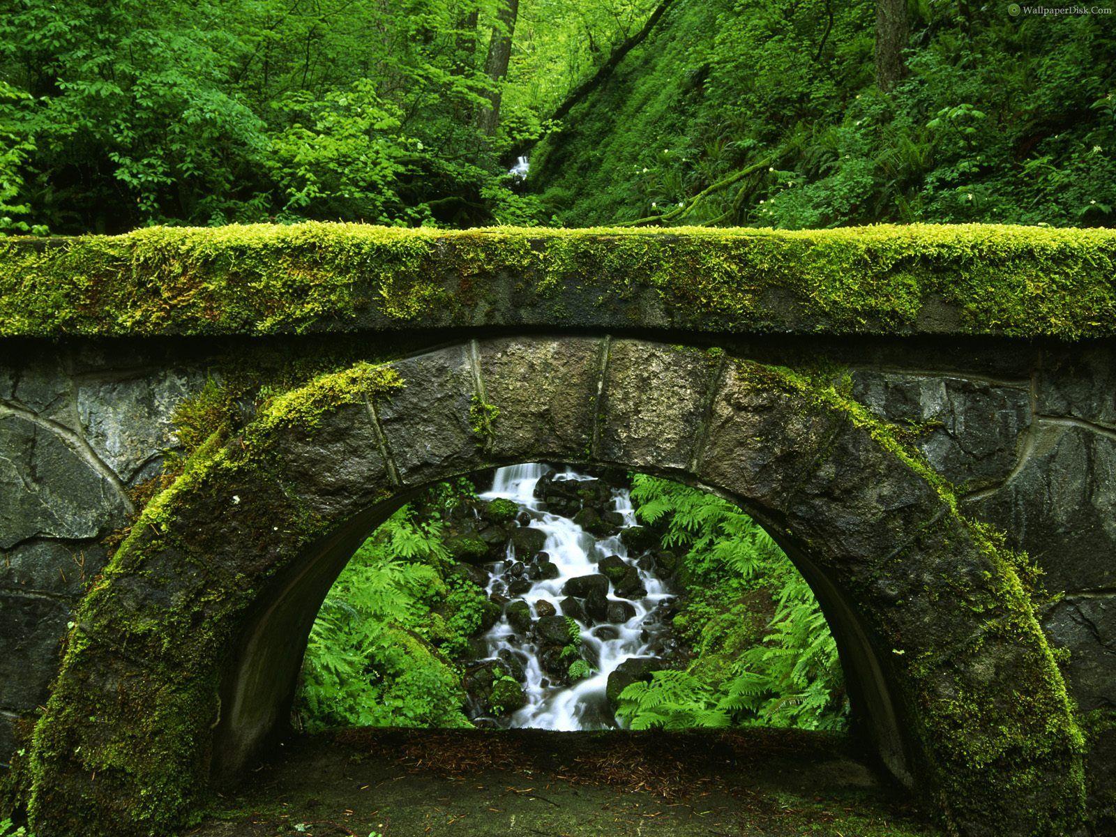 nature scenes | 30 most beautiful nature wallpapers hd | manmade vs