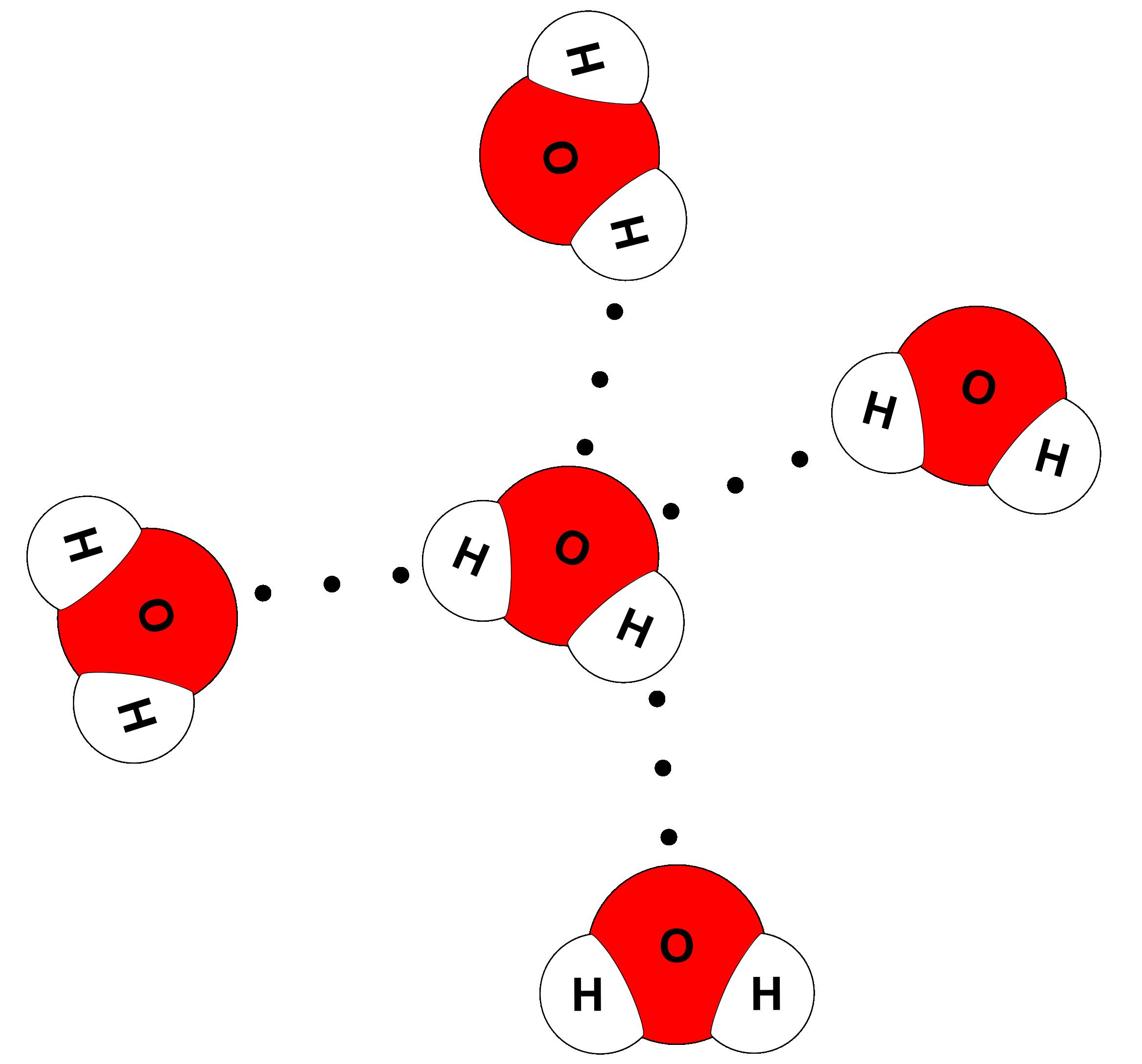 Water Molecule Model Building Activity