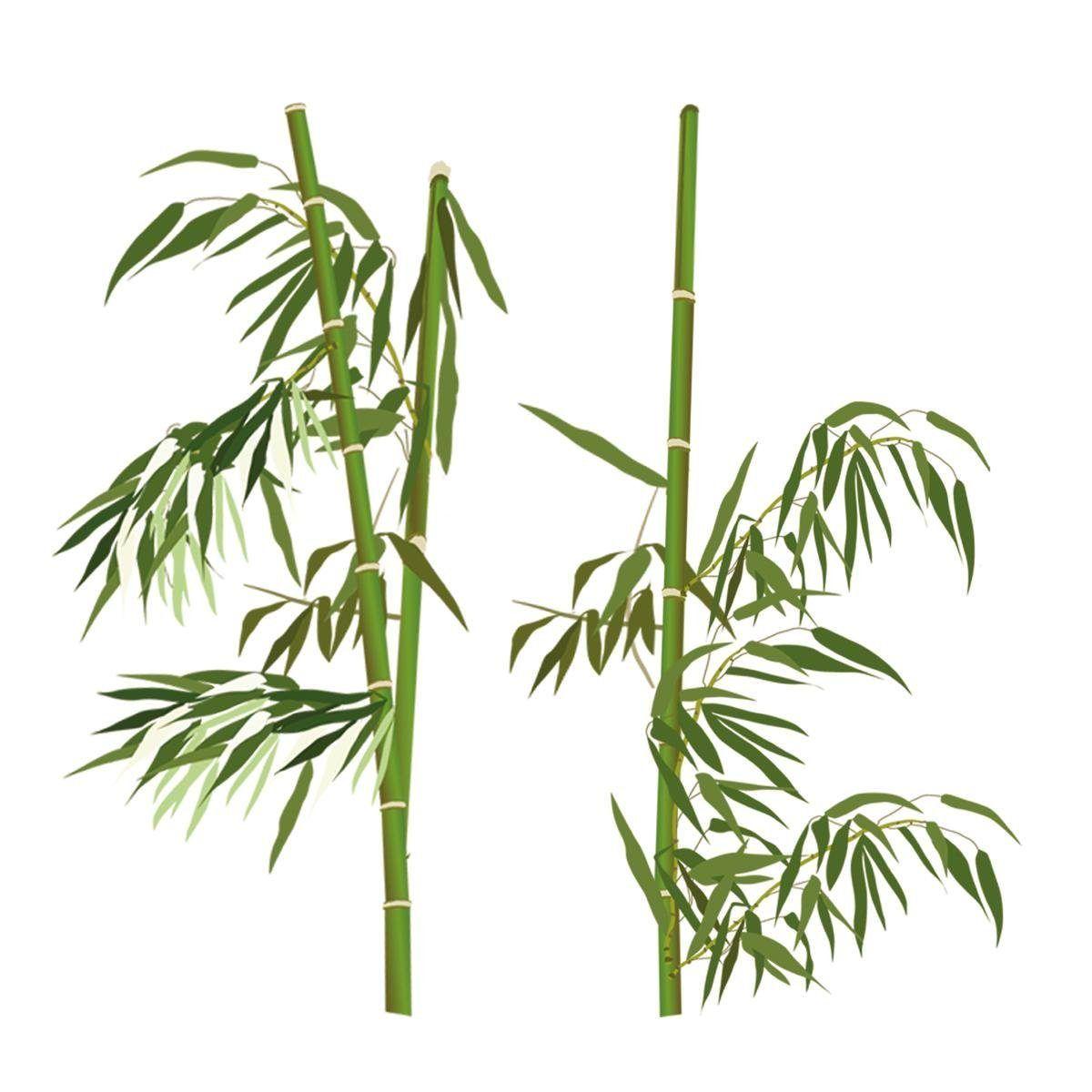 Anspruchsvoll Wandtattoo Gras Dekoration Von Eurographics Wandtattoos »bamboo Everywhere« Grün, (b/h): 30/