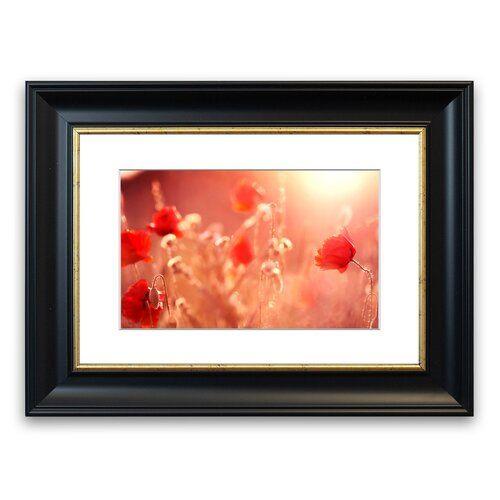 Gerahmter Fotodruck Sommerlicht East Urban Home Größe: 70 cm H x 93 cm B, Rahmenart: Schwarz