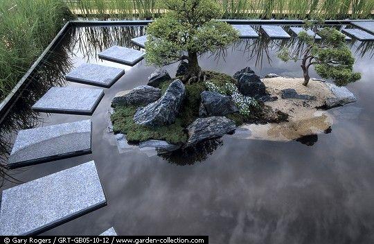 Como se hace un jardin acuatico buscar con google for Jardines acuaticos