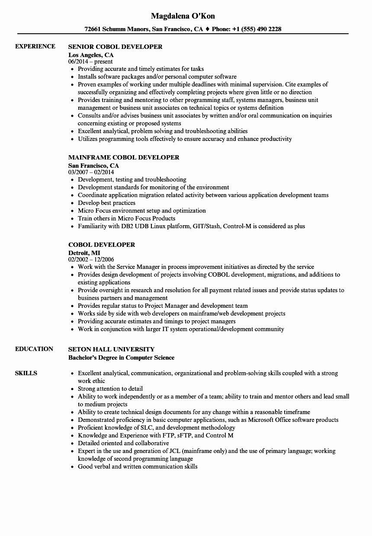 Pin Di Best Resume 2020