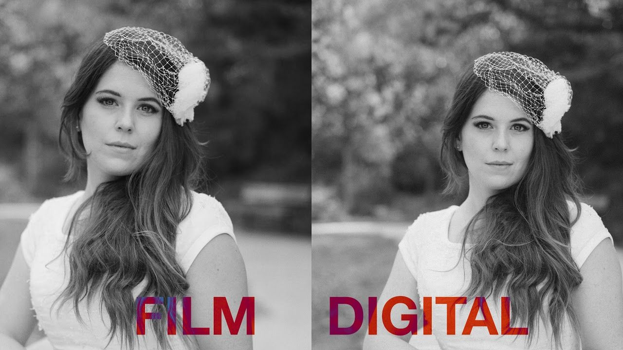 Film vs digital can you tell the difference discover film