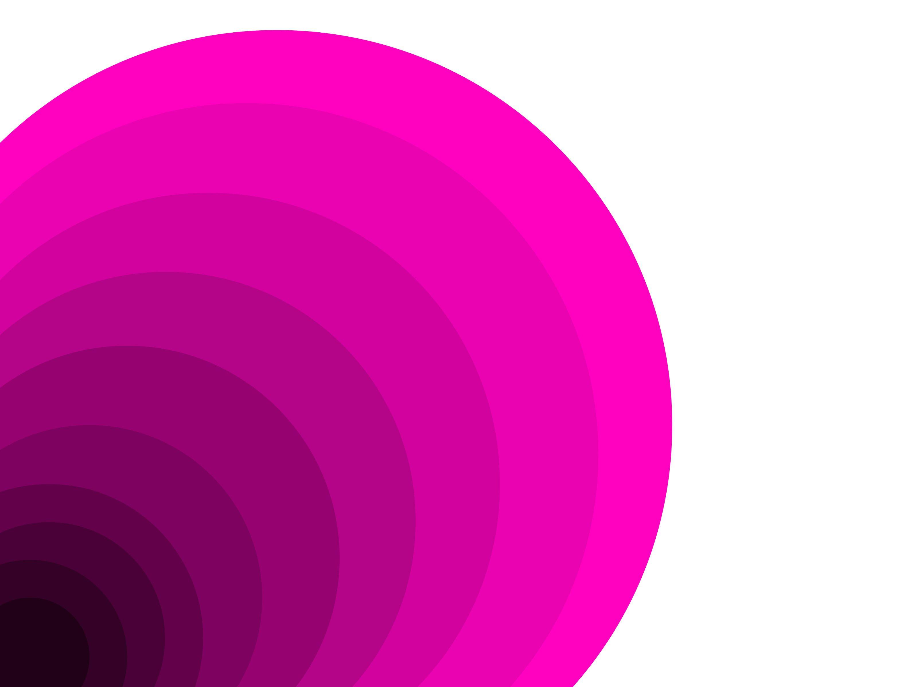 nice Gorgeous Monochromatic Palette Concept