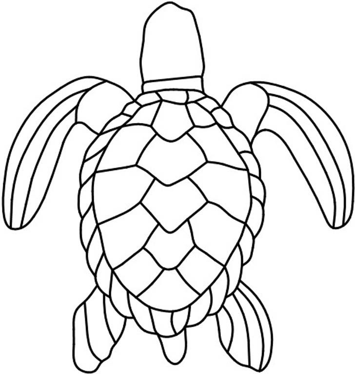 Turtle Pattern 4 Inch Clay Pot Saucer Tacky Glue Green Patio   is part of Stained glass patterns -
